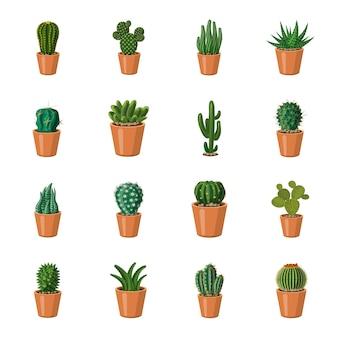 Zestaw ikon kreskówka kaktus, kaktus w doniczce.