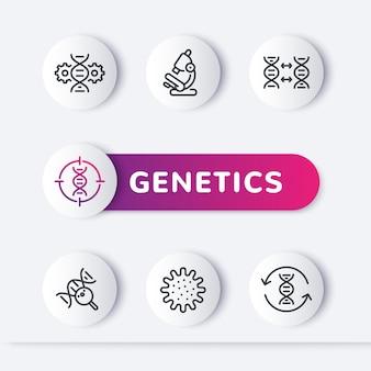 Zestaw ikon linii genetyki, modyfikacja genetyczna, test dna