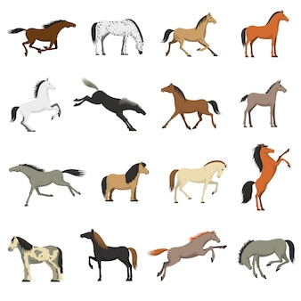 Zestaw ikon obrazów najlepszych ras koni