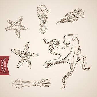Zestaw ikon oceanu życia morskiego podwodnego świata.
