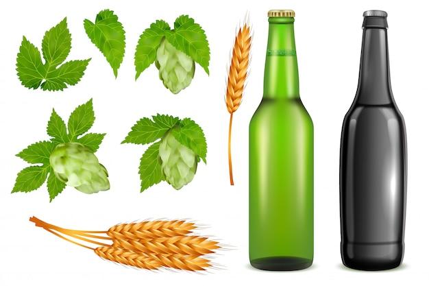 Zestaw ikon opakowanie piwa. wektor realistyczne szklane butelki piwa, pszenica uszy, pąki roślin chmielowych i liści na białym tle.