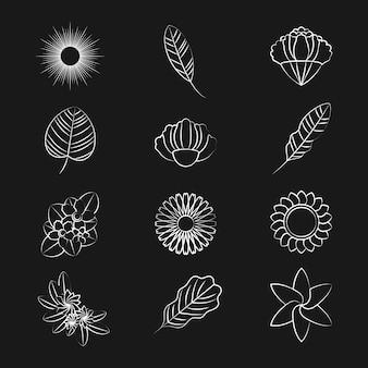Zestaw ikon ornament przyrody