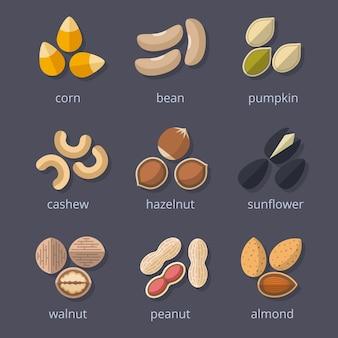 Zestaw ikon orzechów i nasion. migdał i orzech, orzeszki ziemne i dynia, kukurydza i fasola.