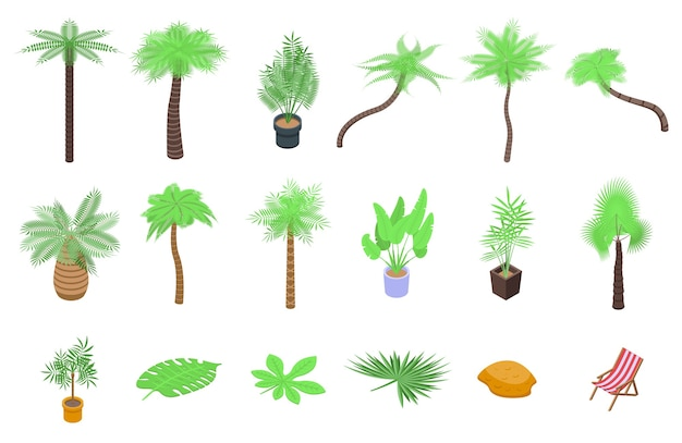 Zestaw ikon palmy. izometryczny zestaw ikon palmy dla sieci web na białym tle
