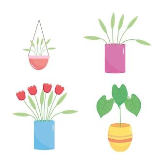 Zestaw ikon pięknych roślin w doniczce na białym tle