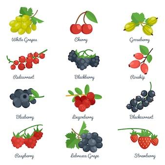 Zestaw ikon płaski jagody