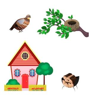Zestaw ikon przepiórki, gniazdo, dom, drewno na białym tle. płaski styl.