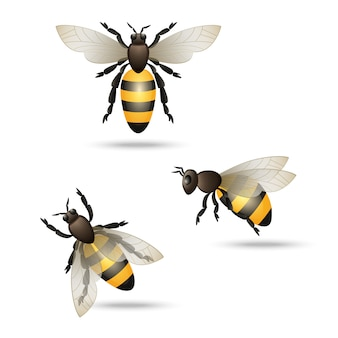 Zestaw ikon pszczół
