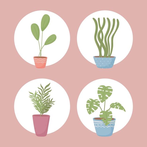 Zestaw ikon roślin doniczkowych