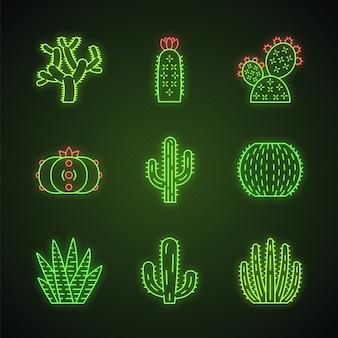 Zestaw ikon światła neonowego dzikich kaktusów