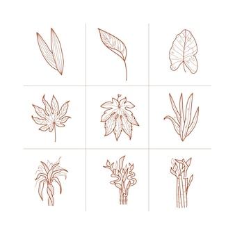 Zestaw ikon tropikalnych liści. minimalna kolekcja wektor kwiaty.