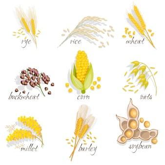 Zestaw ikon zbóż