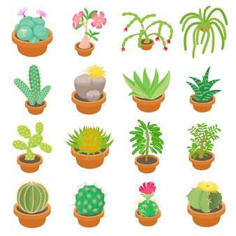 Zestaw ikon zielonych kaktusów