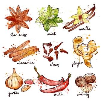 Zestaw ikon zioła i przyprawy