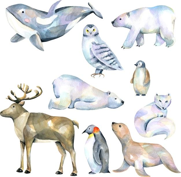 Zestaw ilustracji akwarela cute polarnych zwierząt