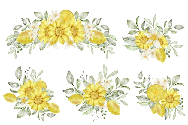 Zestaw ilustracji akwarela kompozycja kwiat cytryny wiosna