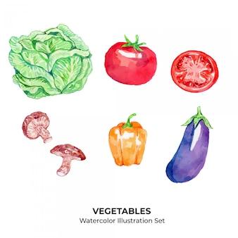 Zestaw ilustracji akwarela warzyw