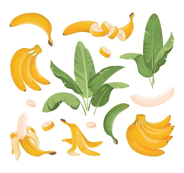 Zestaw ilustracji bananów.