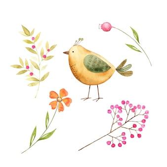 Zestaw ilustracji botanicznych roślin, kwiatów i ptaków, wektor akwareli do projektowania