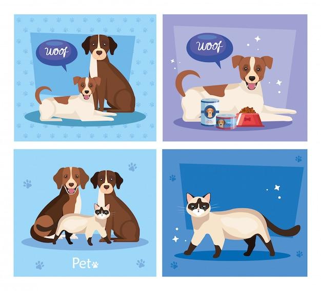 Zestaw ilustracji cute kotów z psami i elementy ilustracji