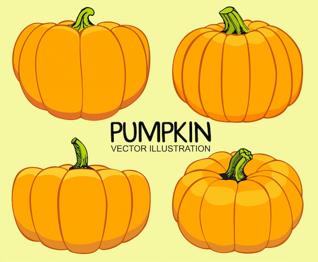 Zestaw ilustracji dynie pomarańczowy jesień.