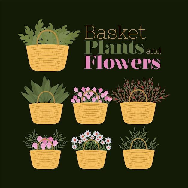 Zestaw ilustracji kosze, rośliny i kwiaty