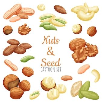 Zestaw ilustracji kreskówka orzechy i nasiona, realistyczne ilustracje różnych orzechów.