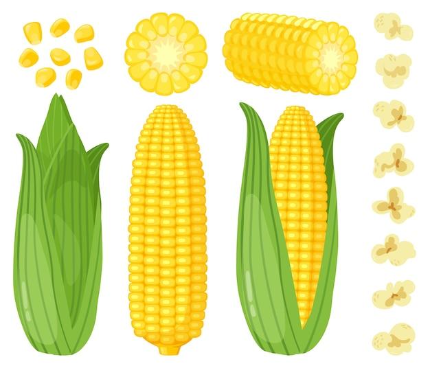 Zestaw ilustracji kukurydzy