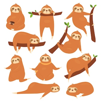 Zestaw ilustracji leniwce.