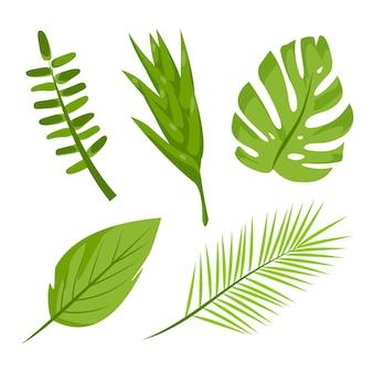 Zestaw ilustracji monochromatycznych liści tropikalnych