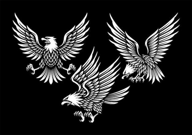 Zestaw ilustracji orła w kolorze czarnym.