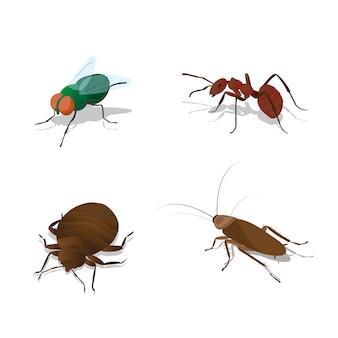 Zestaw ilustracji owadów