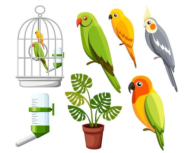 Zestaw ilustracji papugi