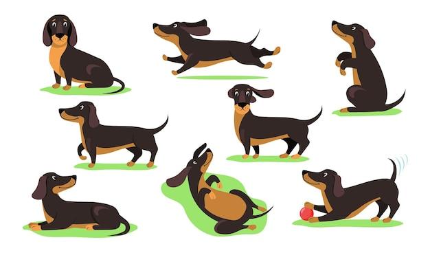 Zestaw ilustracji płaski jamnik pies szczęśliwy kreskówka