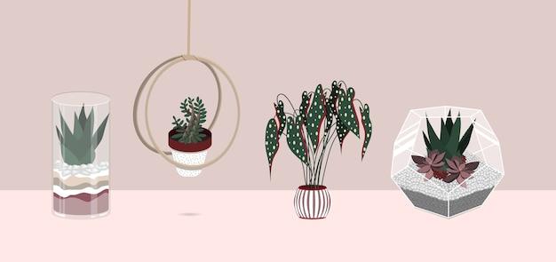 Zestaw ilustracji płaskich kolorów roślin domowych.