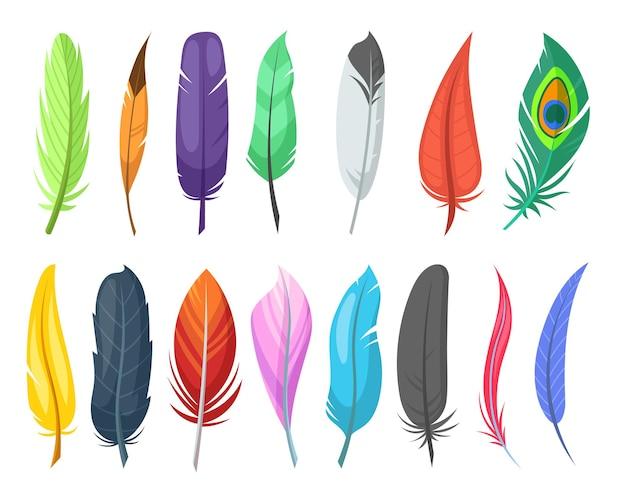 Zestaw ilustracji płaskie błyszczące pióra ptaków