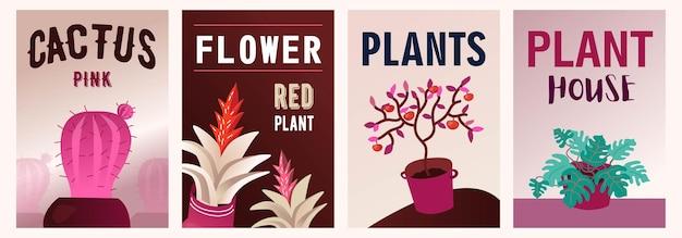 Zestaw ilustracji roślin domowych