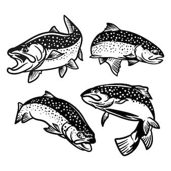 Zestaw ilustracji ryby pstrąga dla logo połowów