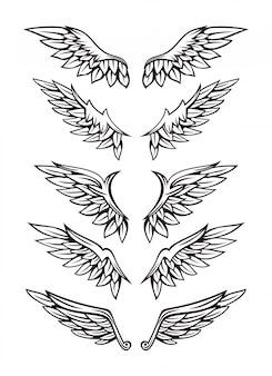 Zestaw ilustracji skrzydła