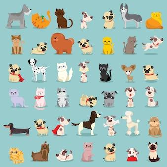 Zestaw ilustracji słodkie i zabawne postaci z kreskówek zwierząt domowych. różne rasy psów i kotów.