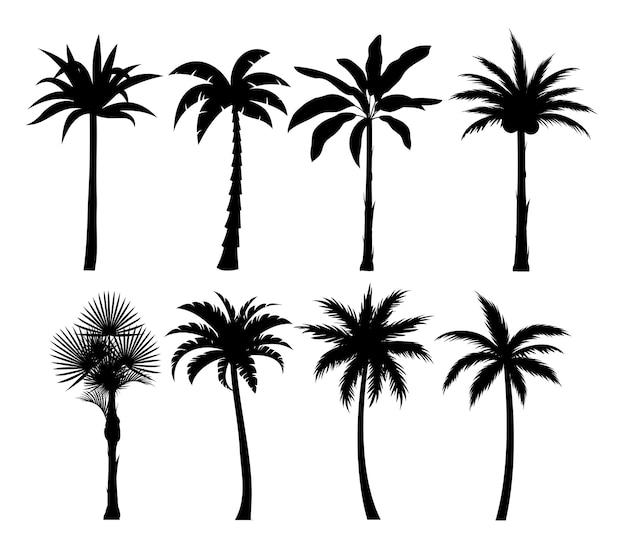 Zestaw ilustracji sylwetki drzew palmowych. egzotyczne rośliny czarne proste na białym tle
