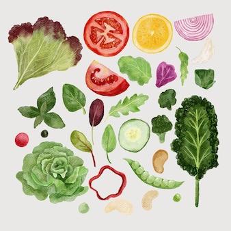 Zestaw ilustracji warzyw akwareli
