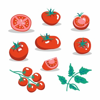 Zestaw ilustracji wektorowych świeże czerwone pomidory. połowa pomidora, plaster pomidora, pomidorki koktajlowe.