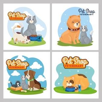 Zestaw ilustracji weterynaryjnych sklep zoologiczny