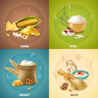 Zestaw ilustracji zbóż