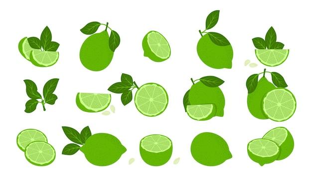 Zestaw izolowanych zielonych owoców limonki