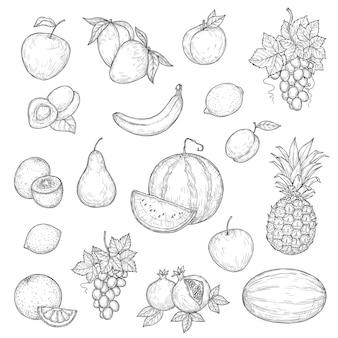 Zestaw jabłek, mango, pomarańczy i bananów