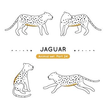 Zestaw jaguarów w różnych pozach na białym tle