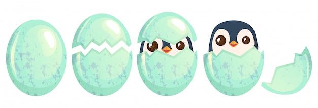 Zestaw jaj na białym tle ptak