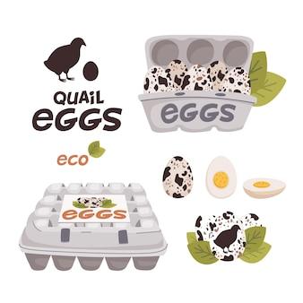 Zestaw jajek przepiórczych w kartonowych pudełkach i logo świeże jaja hodowlane